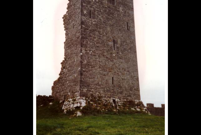 Besprechung David Park: Swallowing the Sun, Beitragsbild 2 Ruine in Irland