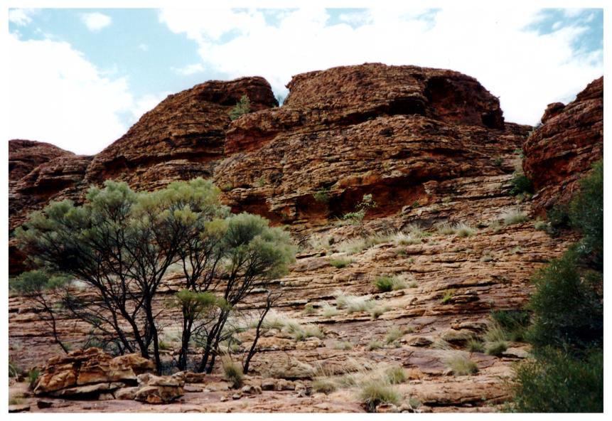 Wüste, Bild 1 zur Krimiscout-Besprechung von Wonder Valley, Ivy Pochoda