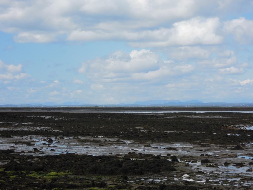 Ebbe, Küste, Ablaufendes Wasser, Bild 1 Besprechung William Shaw, Salt Lane
